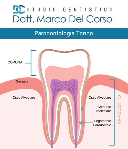 Parodontologia a Torino